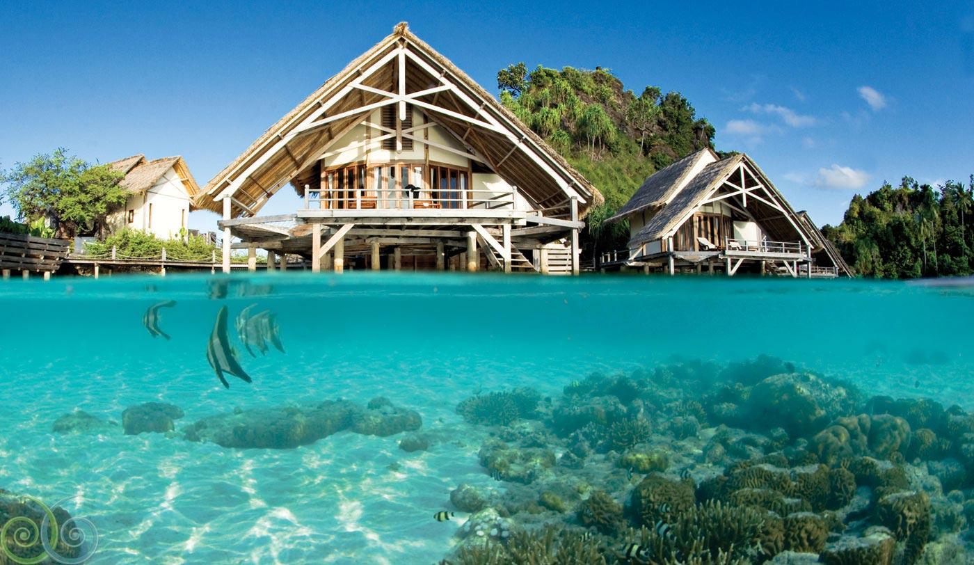 Raja ampat vs bunaken mana yang lebih indah - Raja laut dive resort ...