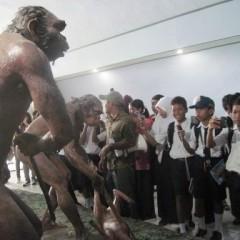 Museum Sangiran